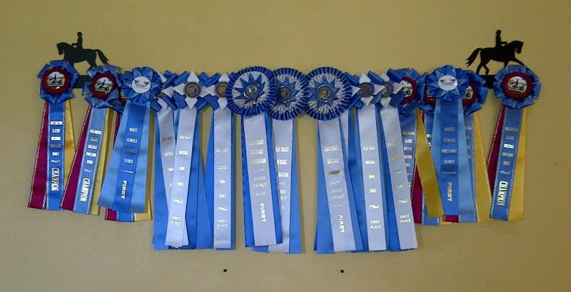 South Gate Farm Blue Ribbons
